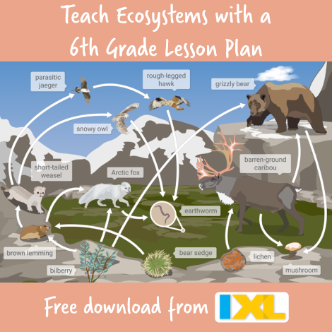 Spring into Ecosystems with a Free Lesson Plan for 6th Grade